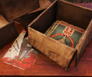 cardboard box, election, and fallout image