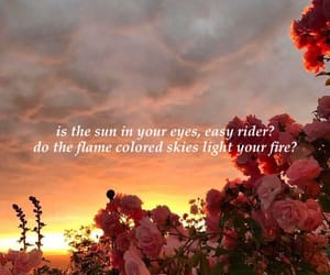 alternative, Easy Rider, and lana image