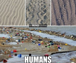 beach, change, and climate image