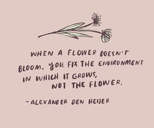quotes, flower, and empowerment image