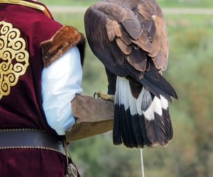 kyrgyzstan, turkic, and eagle hunter image