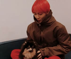 jin, k-pop, and puppy image