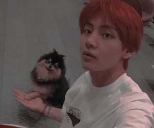 bts, taehyung, and tae image