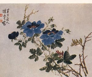 blue, flowers, and postcard image