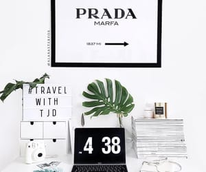 black white, books, and plant image