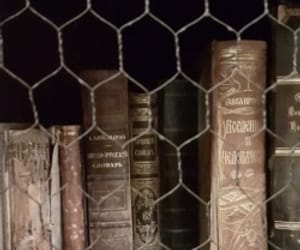 aesthetic, bookish, and books image