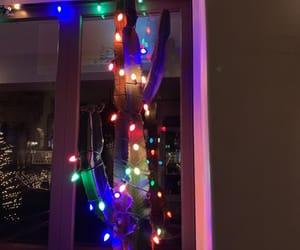 cactus and christmas light image