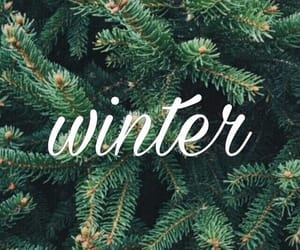 wallpaper and winter image