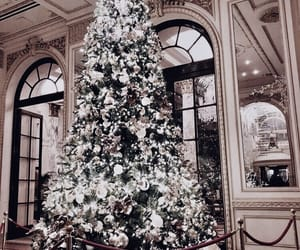 christmas, tree, and holidays image