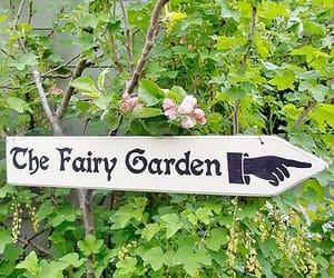 design, Fairies, and fairy image