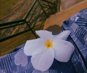 blue, flower, and grunge image