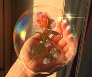 bubbles, flowers, and aesthetic image