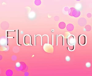 background, pink, and gradient image