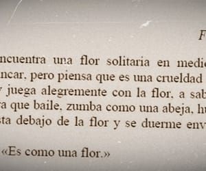 frases, libros, and quotes image