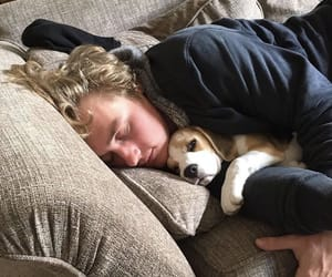 ben hardy and dog image