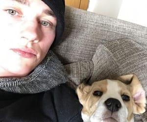 ben hardy, dog, and frankie image