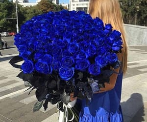 blue, rose, and beautiful image