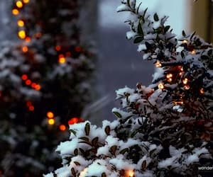 gif, snow, and winter image