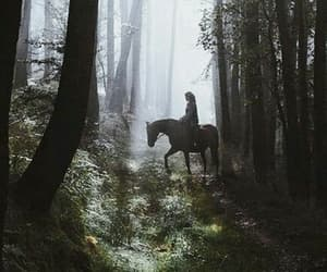 horse, aesthetic, and tumblr image