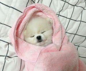 So cute 😂