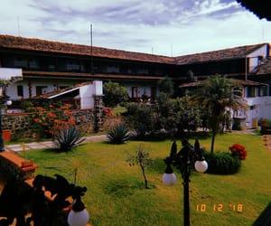 grass, Hacienda, and garden image