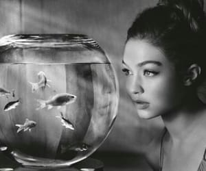 gigi hadid, model, and fish image