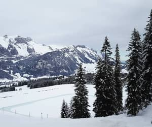 mountains, Skiing, and snow image