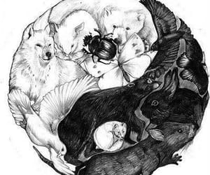animal and yin yang image
