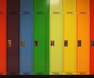 rainbow, aesthetic, and theme image