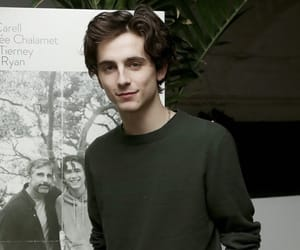 beautiful, call me by your name, and beautiful boy image