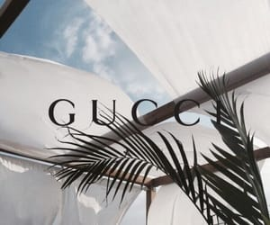 gucci, theme, and palm trees image