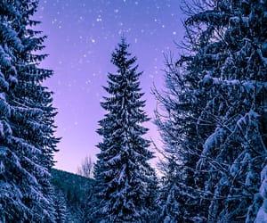 christmas tree, purple, and new year image