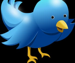 try this and twitter marketing proxies image
