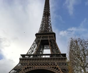autumn, france, and champs elysees image
