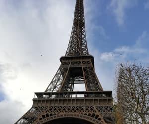 autumn, paris, and winter image
