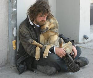 dog, love, and homeless image