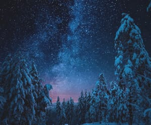 forest, norway, and snow image