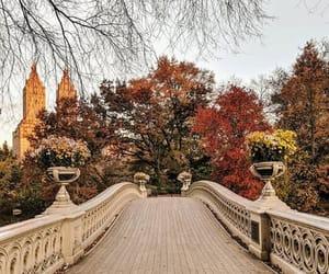 Matthew Kim | Bow Bridge, Central Park, New York.