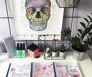 study, medicine, and university image
