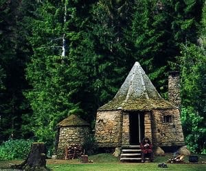 forest, hagrid, and cottage image