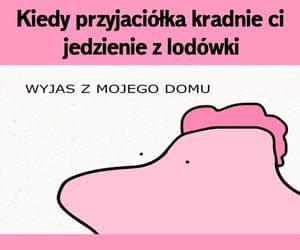 memy and kucezbronksu image