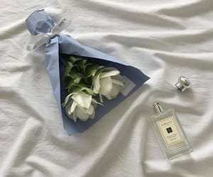 bed, blue, and white image