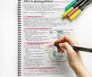 college, study, and escrito image