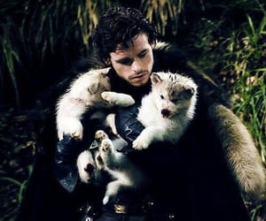 game of thrones, robb stark, and got image