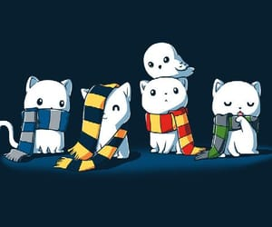 harry potter, gryffindor, and cat image