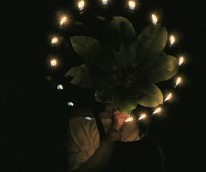 flower and gif image