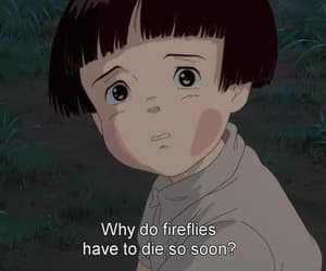 anime, grave of the fireflies, and quotes image