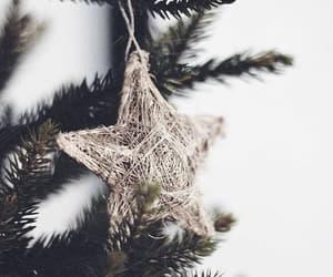 christmas, star, and tree image