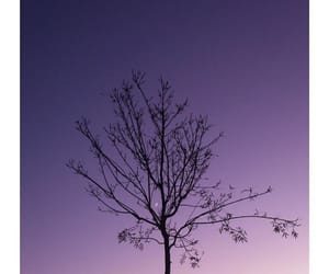 evening, purple, and sky image