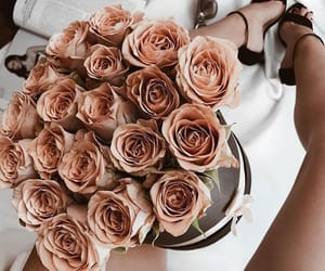 flowers, roses, and chic image